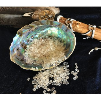 Abalone (Paua) Schelp
